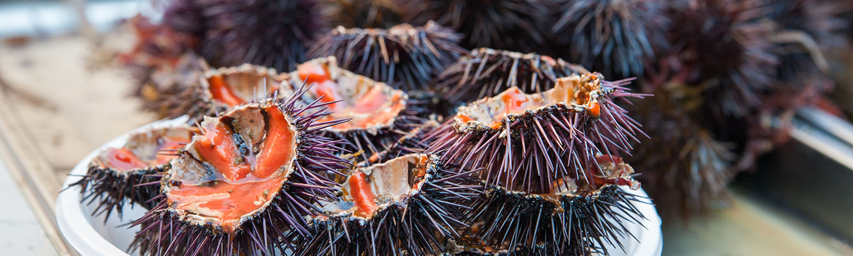 Visita Mercato del Pesce Catania